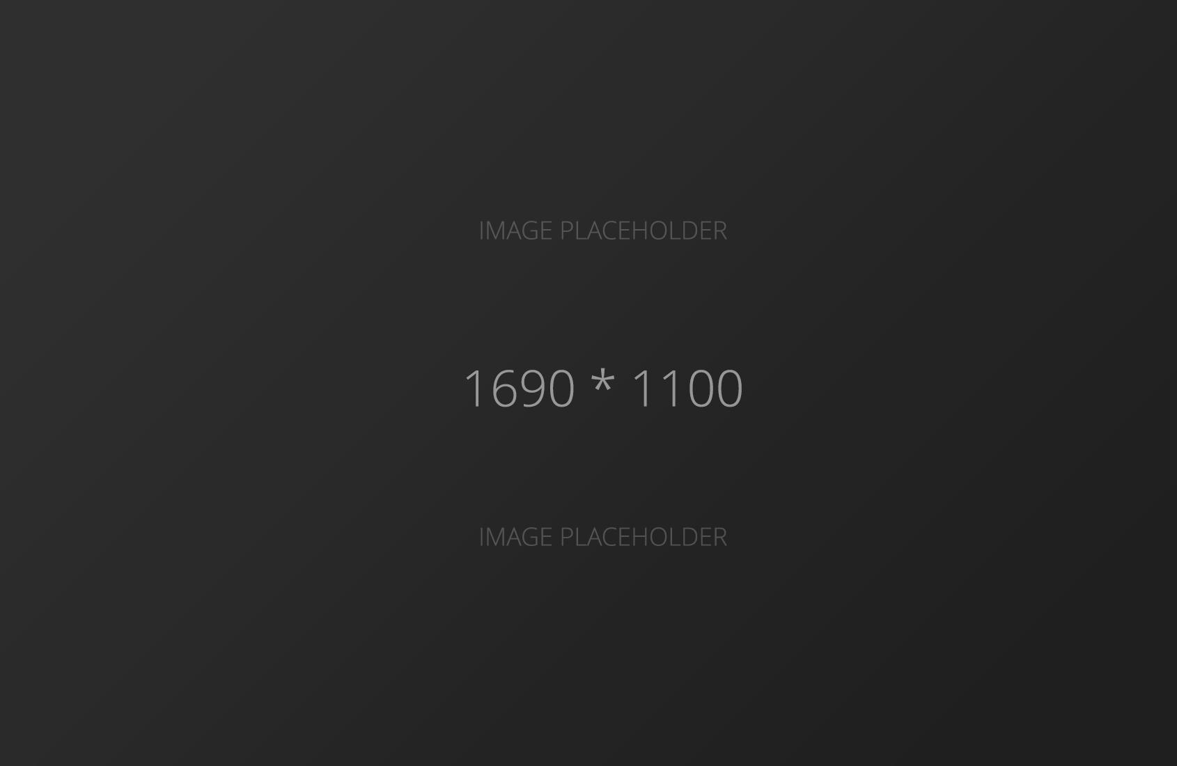 1690x1100